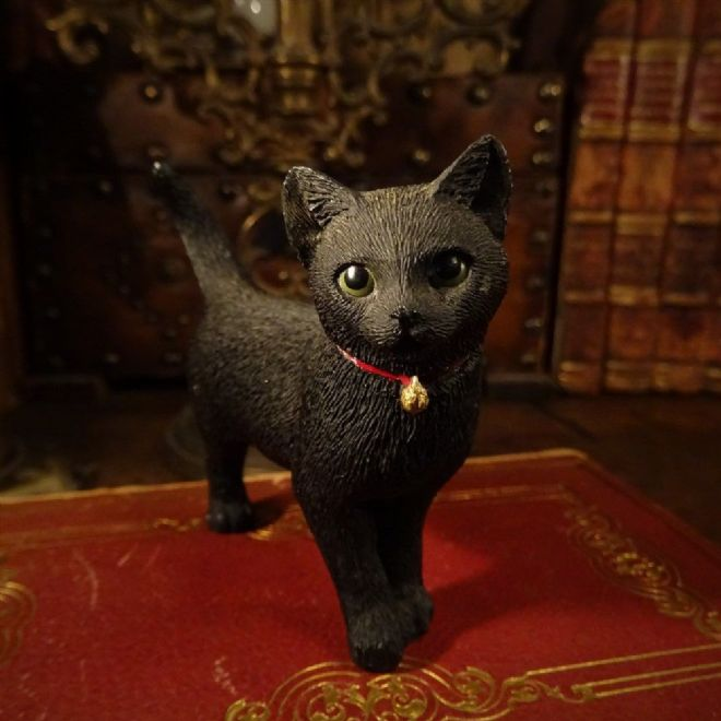 Small Black Cat by Sherratt and Simpson